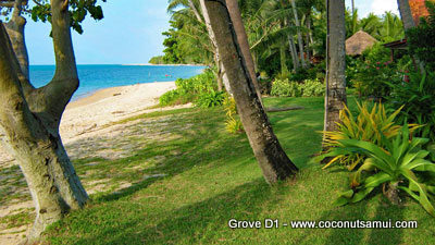 The beach at Coconut Grove is wide and nonbuilt-up.