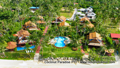Aerial view of Coconut Paradise Resort.