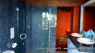 Marble bathroom and glass-walled shower.