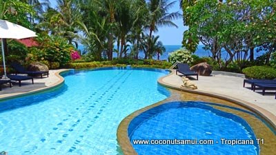 Coconut Tropicana swimming pool.