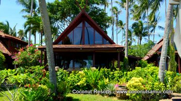 samui holiday villa coconut village a7