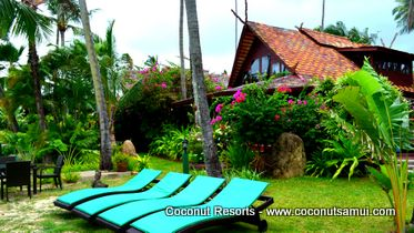 samui holiday villa coconut village a8