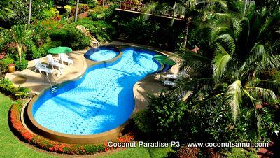 Coconut Paradise communal pool.