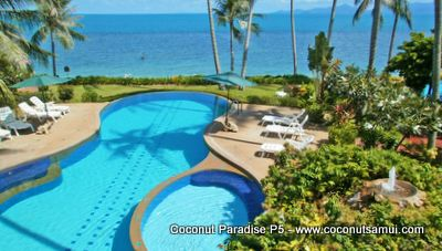 Magnificent beachfront swimming pool at Coconut Paradise.