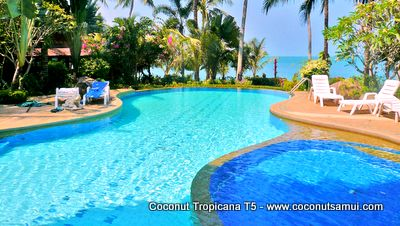 Tropical paradise - Coconut Tropicana Resort.